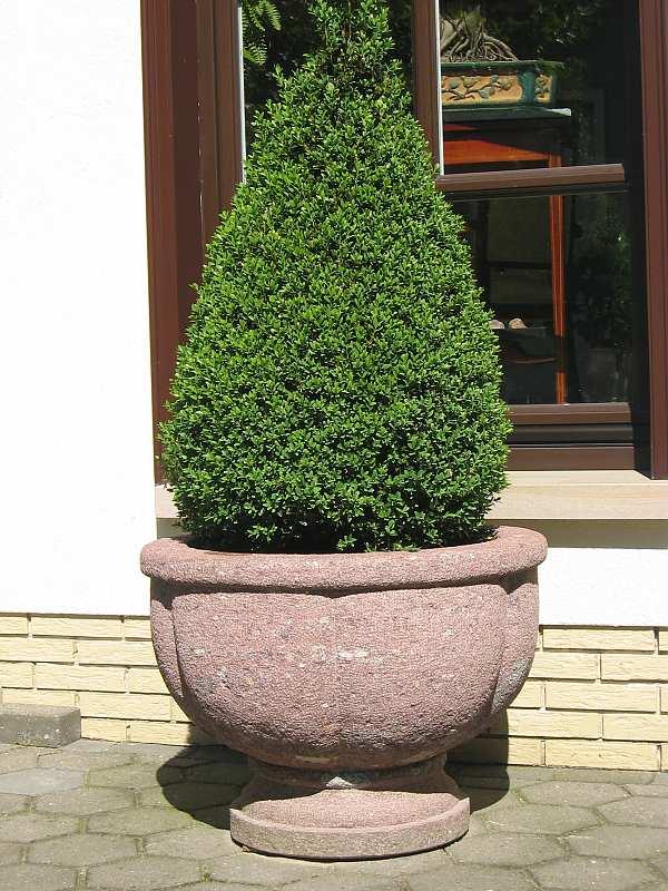 bumenk bel online shop japan gardens design. Black Bedroom Furniture Sets. Home Design Ideas